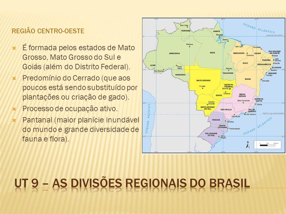 REGIÃO CENTRO-OESTE É formada pelos estados de Mato Grosso, Mato Grosso do Sul e Goiás (além do Distrito Federal). Predomínio do Cerrado (que aos pouc