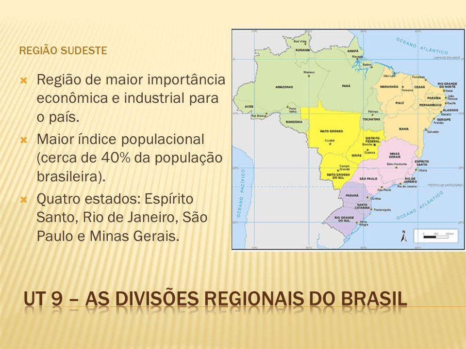 REGIÃO SUDESTE Região de maior importância econômica e industrial para o país. Maior índice populacional (cerca de 40% da população brasileira). Quatr