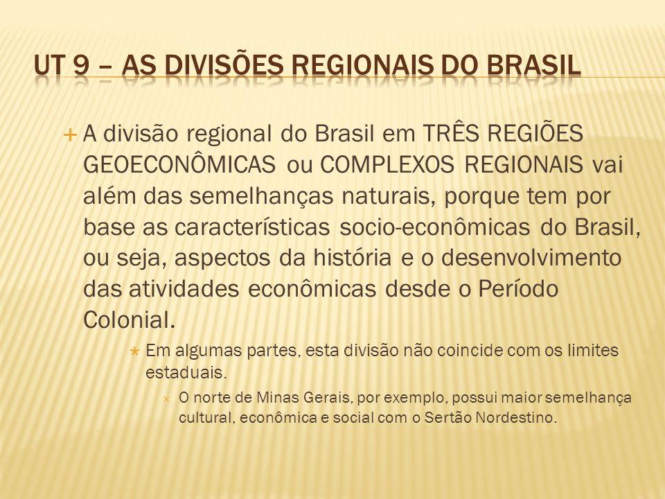 A divisão regional do Brasil em TRÊS REGIÕES GEOECONÔMICAS ou COMPLEXOS REGIONAIS vai além das semelhanças naturais, porque tem por base as características socio-econômicas do Brasil, ou seja, aspectos da história e o desenvolvimento das atividades econômicas desde o Período Colonial.