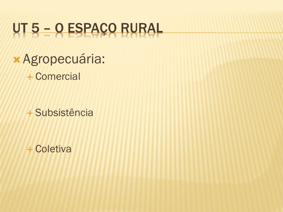 Agropecuária: Comercial Subsistência Coletiva
