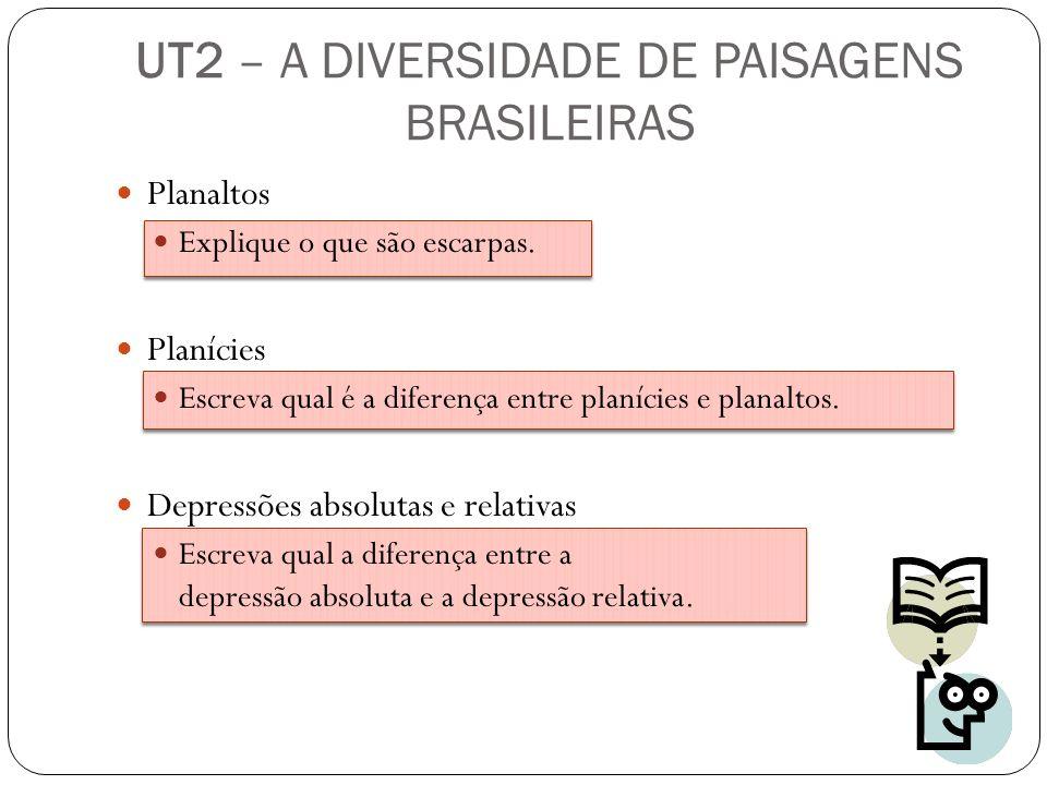 Planaltos Explique o que são escarpas. Planícies Escreva qual é a diferença entre planícies e planaltos. Depressões absolutas e relativas Escreva qual