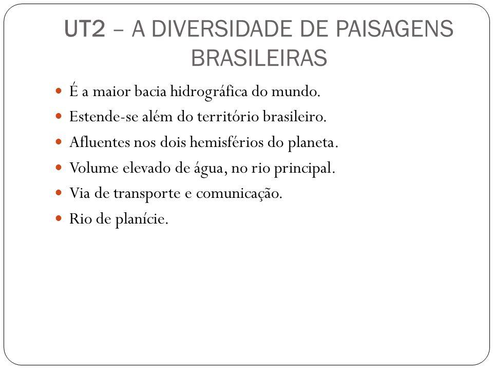 UT2 – A DIVERSIDADE DE PAISAGENS BRASILEIRAS É a maior bacia hidrográfica do mundo. Estende-se além do território brasileiro. Afluentes nos dois hemis