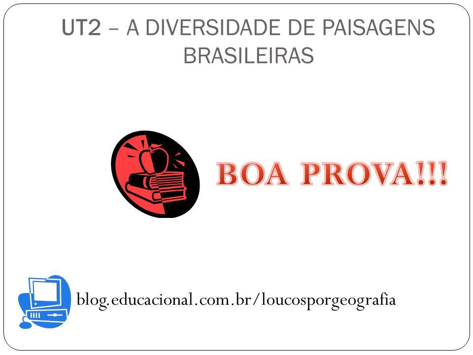 UT2 – A DIVERSIDADE DE PAISAGENS BRASILEIRAS blog.educacional.com.br/loucosporgeografia