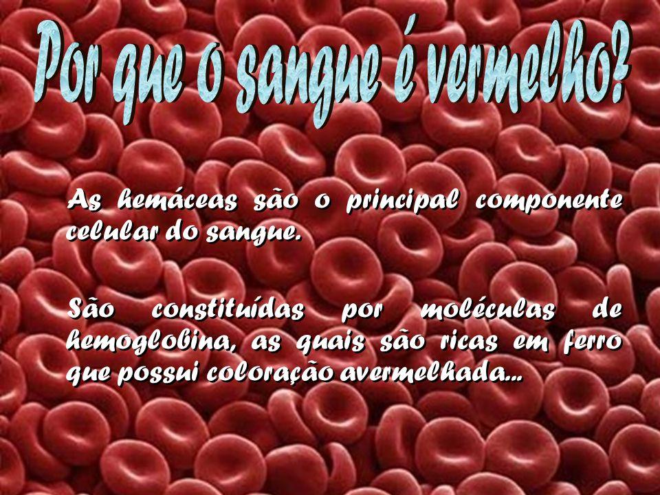 As hemáceas são o principal componente celular do sangue. São constituídas por moléculas de hemoglobina, as quais são ricas em ferro que possui colora