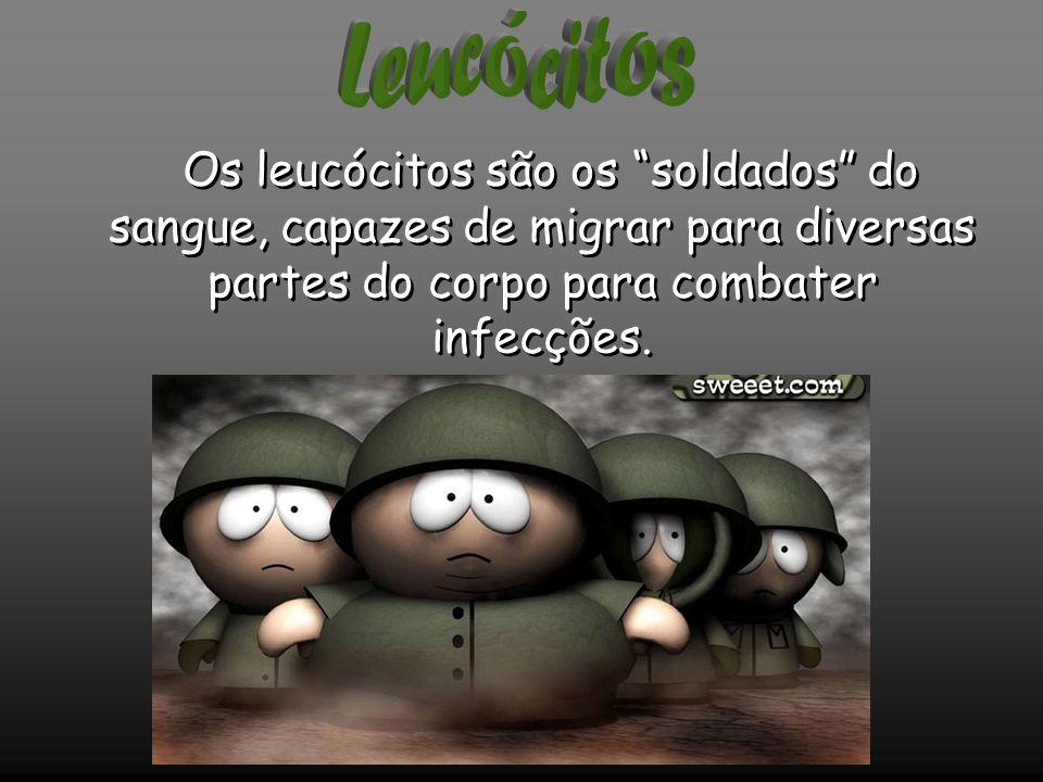 Os leucócitos são os soldados do sangue, capazes de migrar para diversas partes do corpo para combater infecções.