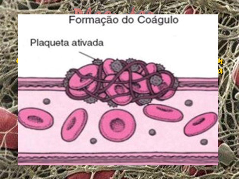 Os tecidos afetados e as plaquetas produzem substâncias químicas que ajudam a ativar a fibrina. As plaquetas e as hemácias ficam retidas na rede de fi