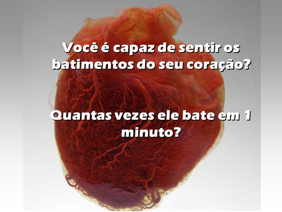 Você é capaz de sentir os batimentos do seu coração? Quantas vezes ele bate em 1 minuto? Você é capaz de sentir os batimentos do seu coração? Quantas