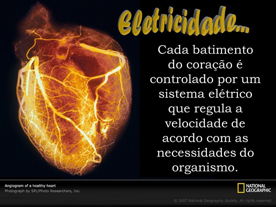 Cada batimento do coração é controlado por um sistema elétrico que regula a velocidade de acordo com as necessidades do organismo.