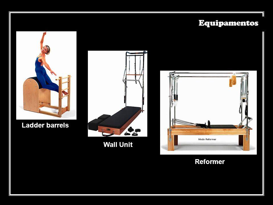Ladder barrelsWall Unit Reformer Equipamentos