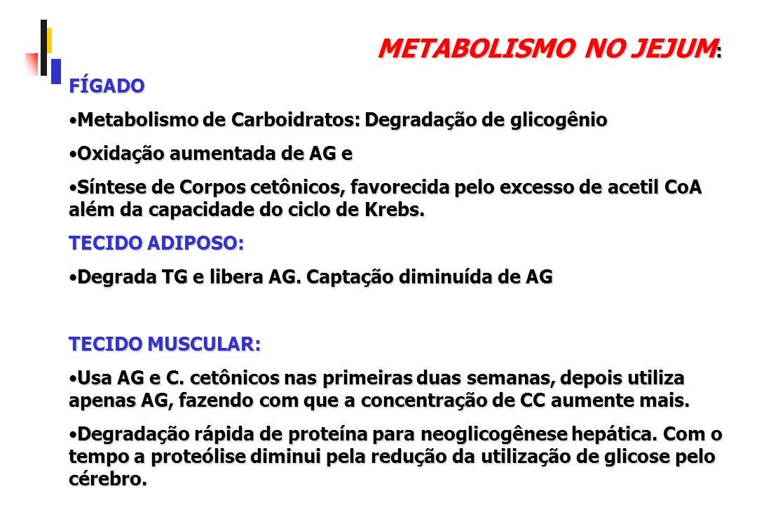 Conceitos para avaliação da composição corporal: Composição corporal Massa gorda: Todos os lípides extraíveis do corpo.