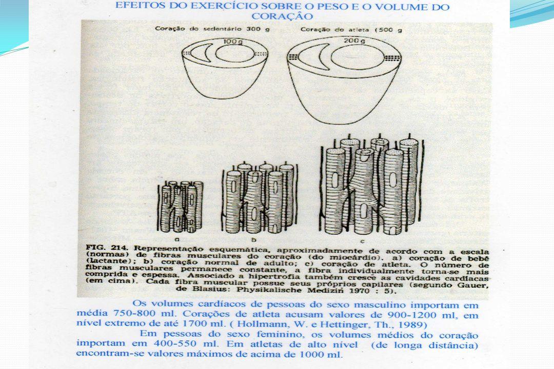 b) Cardiopulmonares: Aumento do volume vital; Aumento da eficiência respiratória; Maior capacidade de oxigenação; c) Metabólicos: Intens.