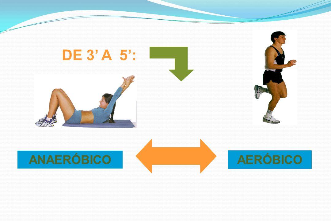 DE 3 A 5: ANAERÓBICOAERÓBICO