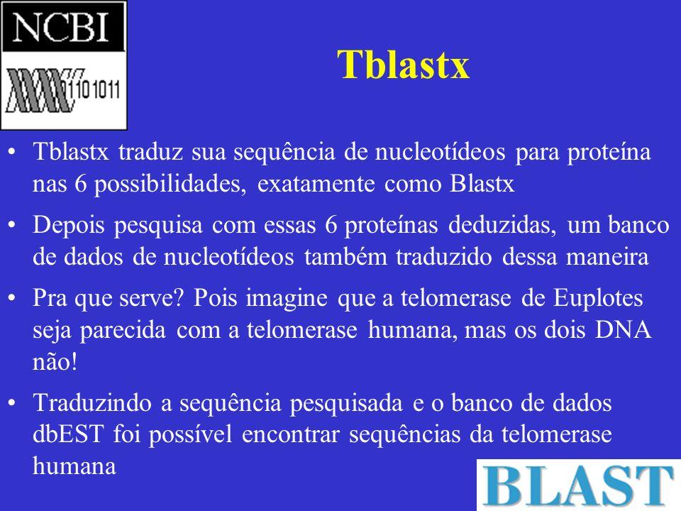 Tblastx Tblastx traduz sua sequência de nucleotídeos para proteína nas 6 possibilidades, exatamente como Blastx Depois pesquisa com essas 6 proteínas