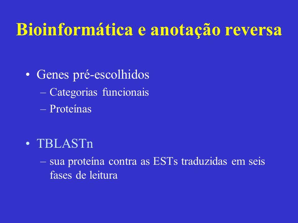 Bioinformática e anotação reversa Genes pré-escolhidos –Categorias funcionais –Proteínas TBLASTn –sua proteína contra as ESTs traduzidas em seis fases