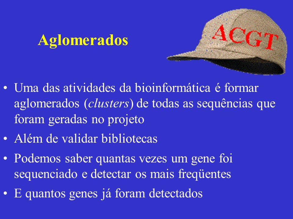 Uma das atividades da bioinformática é formar aglomerados (clusters) de todas as sequências que foram geradas no projeto Além de validar bibliotecas P