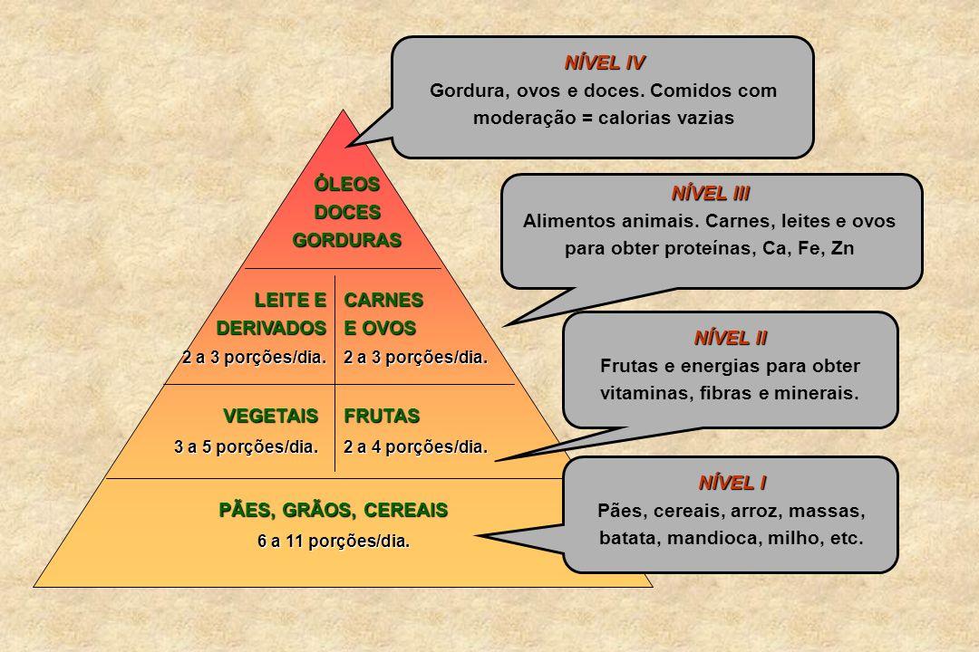 NÍVEL I Pães, cereais, arroz, massas, batata, mandioca, milho, etc. PÃES, GRÃOS, CEREAIS 6 a 11 porções/dia. NÍVEL II Frutas e energias para obter vit