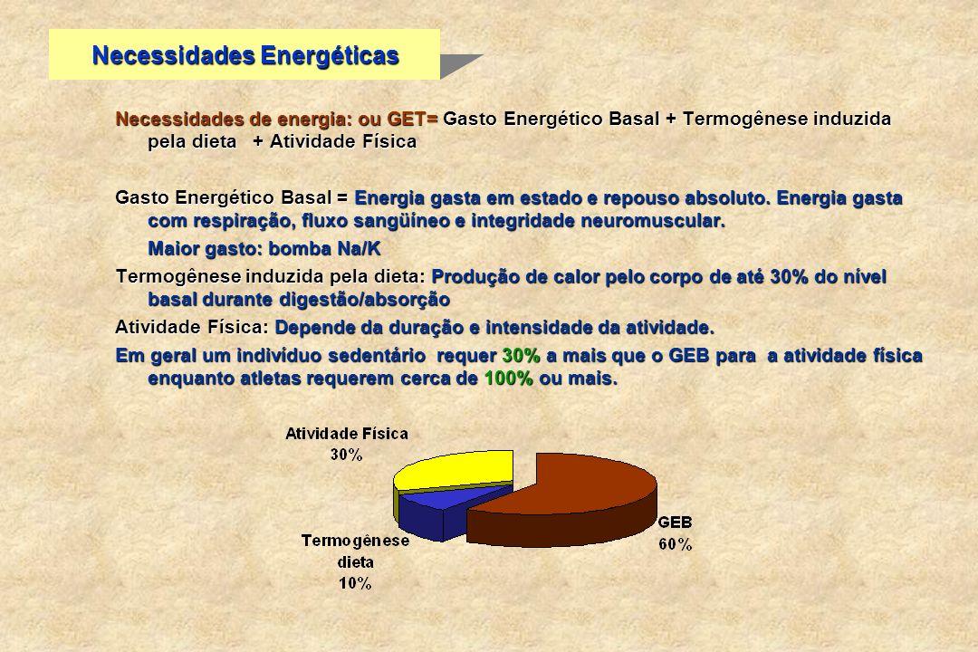 Necessidades Energéticas Necessidades de energia: ou GET= Gasto Energético Basal + Termogênese induzida pela dieta + Atividade Física Gasto Energético