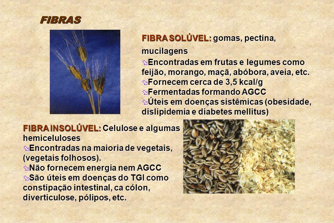 FIBRA SOLÚVEL: gomas, pectina, mucilagens Encontradas em frutas e legumes como feijão, morango, maçã, abóbora, aveia, etc. Encontradas em frutas e leg