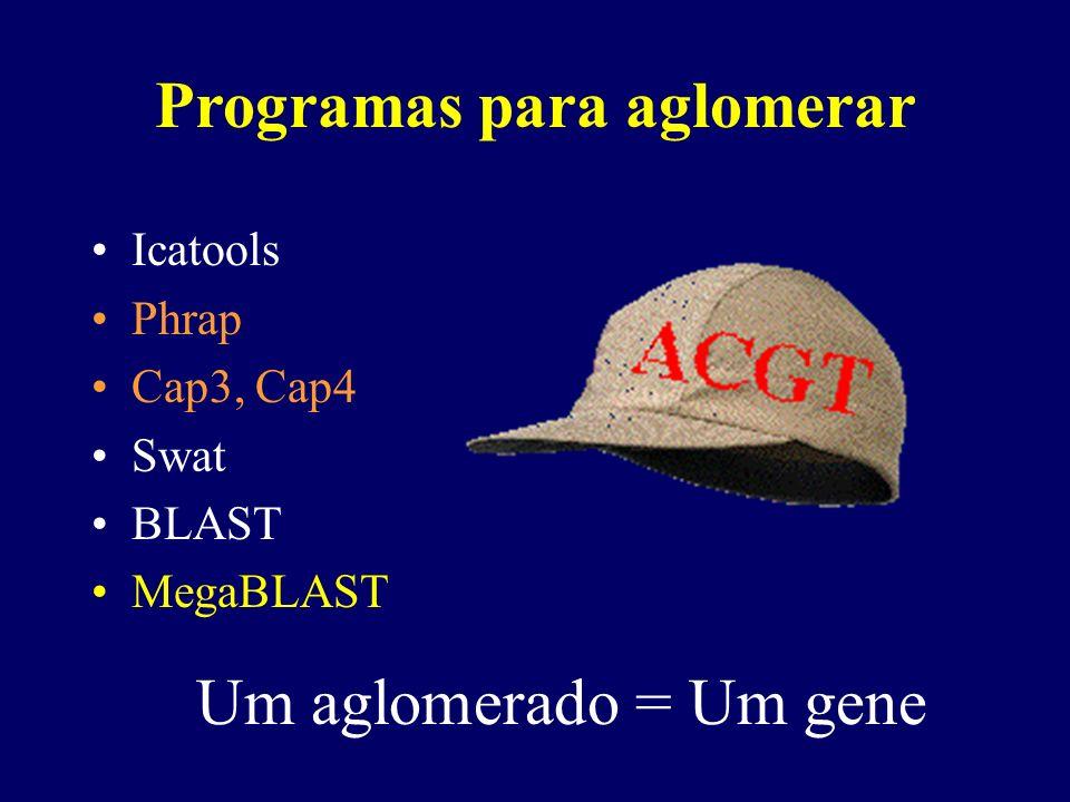 Programas para aglomerar Icatools Phrap Cap3, Cap4 Swat BLAST MegaBLAST Um aglomerado = Um gene