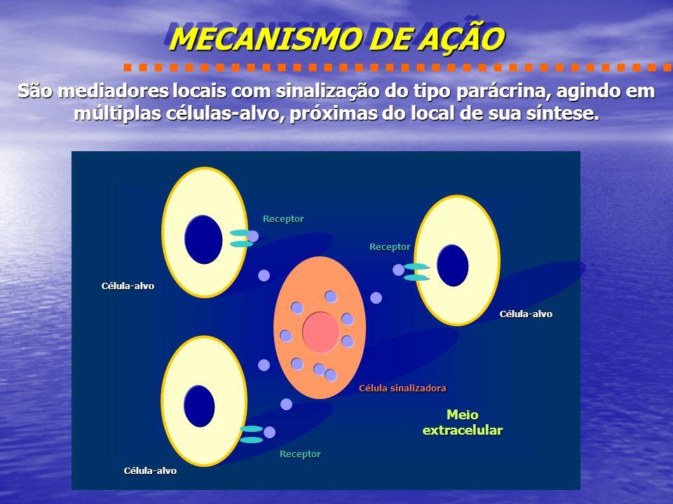 Principais Funções dos Eicosanóides Prostaglandinas Controle da pressão arterial; Controle da pressão arterial; Estimulação da contração da musculatura lisa; Estimulação da contração da musculatura lisa; Indução da resposta inflamatória; Indução da resposta inflamatória; Inibição da agregação plaquetária; Inibição da agregação plaquetária; Tromboxanas Estimulação da contração da musculatura lisa; Estimulação da contração da musculatura lisa; Indução da agregação plaquetária; Indução da agregação plaquetária;Tromboxanas Estimulação da contração da musculatura lisa; Estimulação da contração da musculatura lisa; Indução da agregação plaquetária; Indução da agregação plaquetária; Leucotrienos Leucotrienos Estimulação da contração da musculatura lisa; Estimulação da contração da musculatura lisa; Indução da resposta alérgica; Indução da resposta alérgica; Indução da resposta inflamatória.