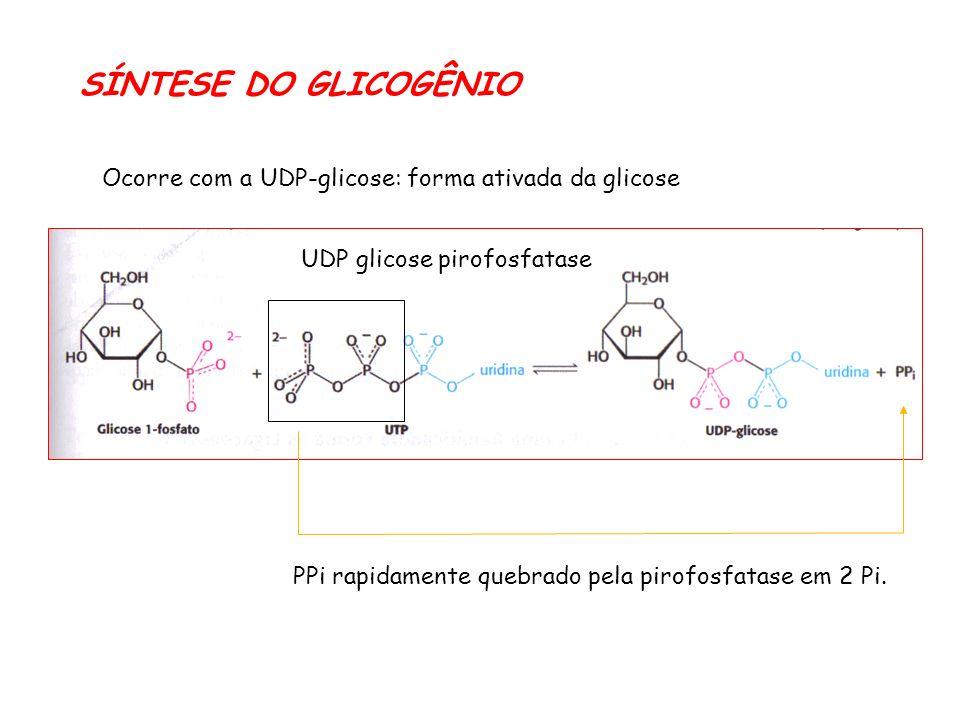 Ocorre com a UDP-glicose: forma ativada da glicose UDP glicose pirofosfatase PPi rapidamente quebrado pela pirofosfatase em 2 Pi.