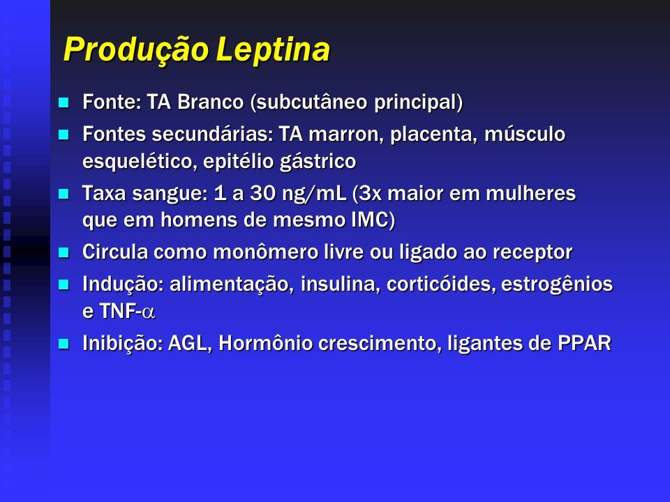 Produção Leptina Fonte: TA Branco (subcutâneo principal) Fonte: TA Branco (subcutâneo principal) Fontes secundárias: TA marron, placenta, músculo esqu