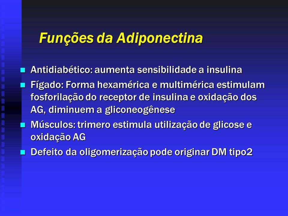 Funções da Adiponectina Antidiabético: aumenta sensibilidade a insulina Antidiabético: aumenta sensibilidade a insulina Fígado: Forma hexamérica e mul