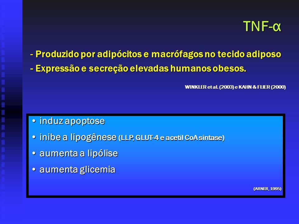 TNF-α - Produzido por adipócitos e macrófagos no tecido adiposo - Expressão e secreção elevadas humanos obesos. induz apoptose induz apoptose inibe a