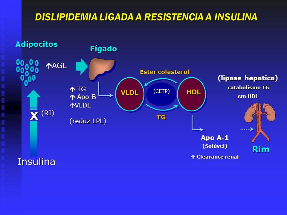 (lipase hepatica) catabolismo TG catabolismo TG em HDL Rim (CETP) Ester colesterol VLD L VLD L HDL TG Apo A-1 (Solúvel) Clearance renal Clearance rena