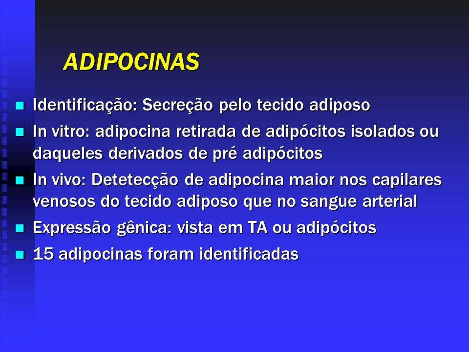 ADIPOCINAS Identificação: Secreção pelo tecido adiposo Identificação: Secreção pelo tecido adiposo In vitro: adipocina retirada de adipócitos isolados