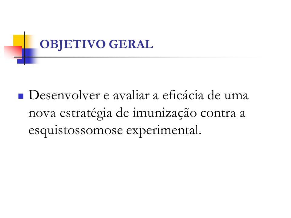 OBJETIVO GERAL Desenvolver e avaliar a eficácia de uma nova estratégia de imunização contra a esquistossomose experimental.