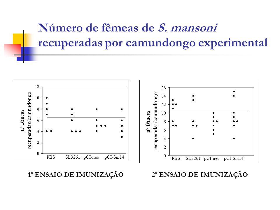 Número de fêmeas de S. mansoni recuperadas por camundongo experimental PBS SL3261 pCI-neo pCI-Sm14 1º ENSAIO DE IMUNIZAÇÃO2º ENSAIO DE IMUNIZAÇÃO