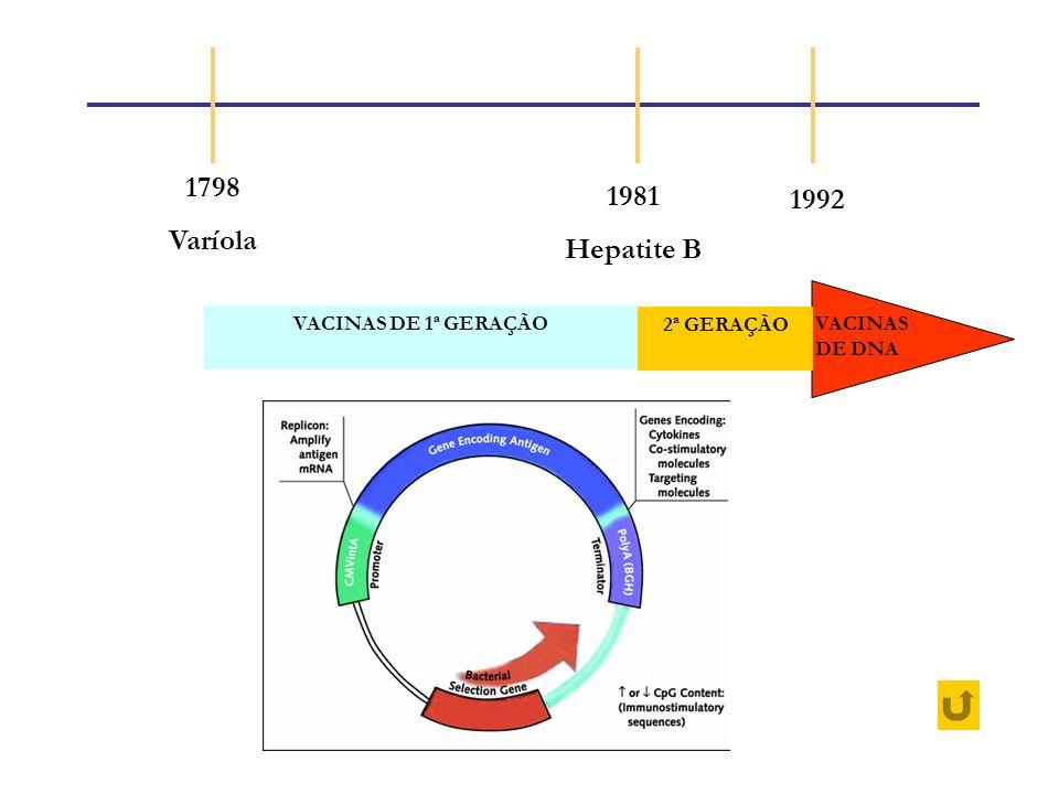 1798 Varíola 1981 Hepatite B 1992 VACINAS DE 1ª GERAÇÃO 2ª GERAÇÃO VACINAS DE DNA