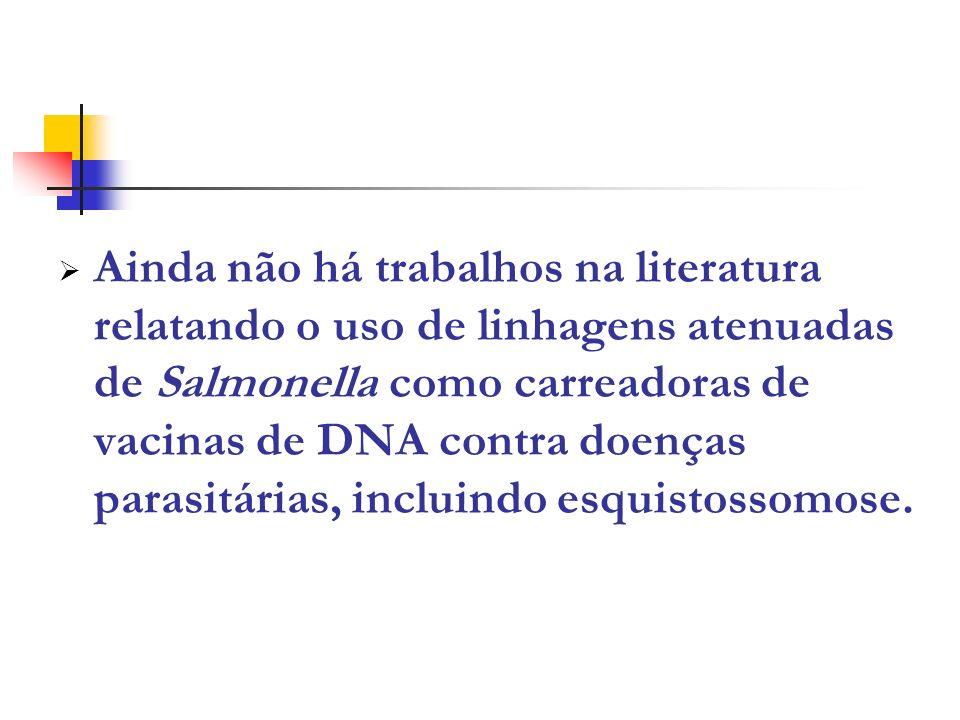 Ainda não há trabalhos na literatura relatando o uso de linhagens atenuadas de Salmonella como carreadoras de vacinas de DNA contra doenças parasitári