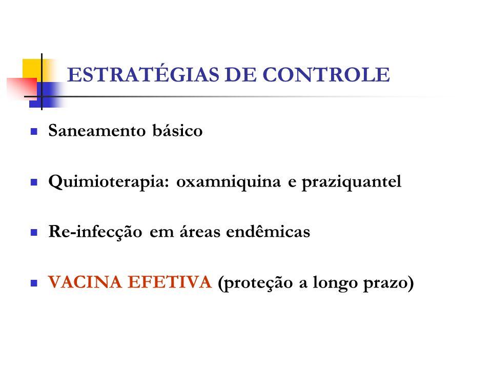 ESTRATÉGIAS DE CONTROLE Saneamento básico Quimioterapia: oxamniquina e praziquantel Re-infecção em áreas endêmicas VACINA EFETIVA (proteção a longo pr