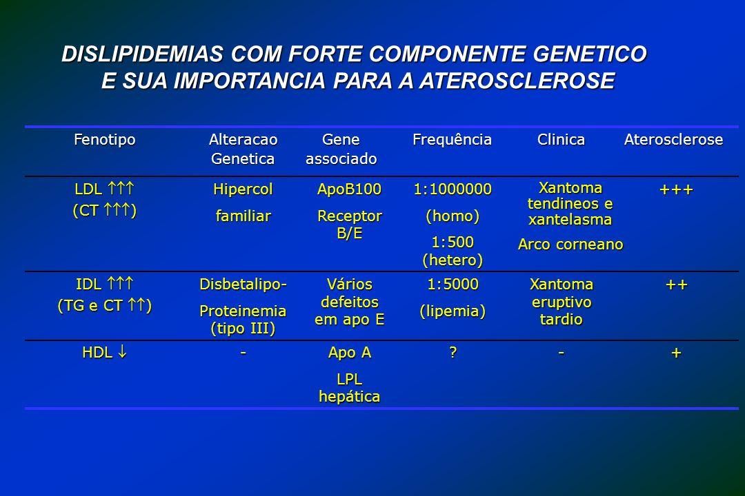 +-? Apo A LPL hepática - HDL HDL ++ Xantoma eruptivo tardio 1:5000(lipemia) Vários defeitos em apo E Disbetalipo- Proteinemia (tipo III) IDL IDL (TG e