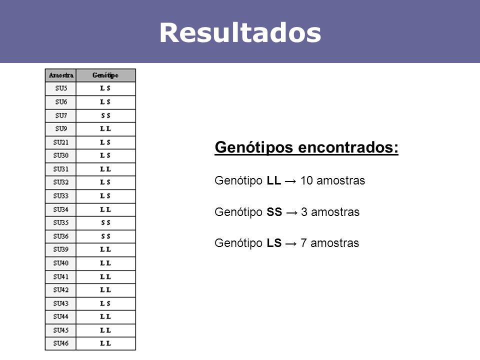 Resultados Genótipos encontrados: Genótipo LL 10 amostras Genótipo SS 3 amostras Genótipo LS 7 amostras