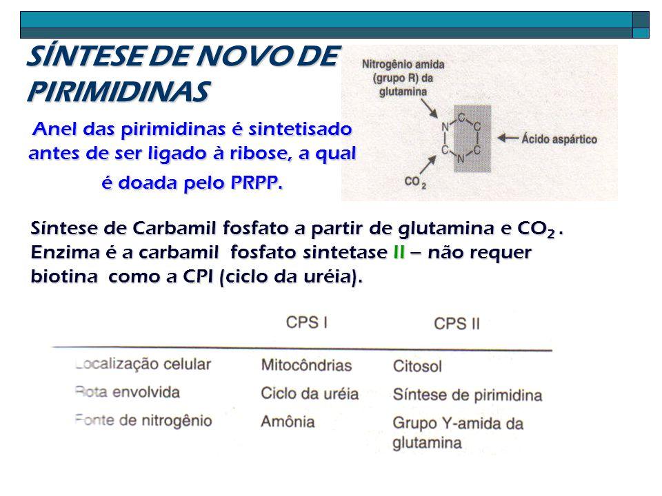 Anel das pirimidinas é sintetisado antes de ser ligado à ribose, a qual é doada pelo PRPP. Síntese de Carbamil fosfato a partir de glutamina e CO 2. E