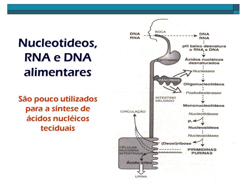 Nucleotideos, RNA e DNA alimentares São pouco utilizados para a síntese de ácidos nucléicos teciduais