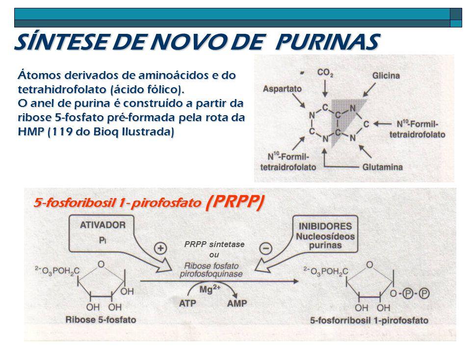PRPP sintetase ou Átomos derivados de aminoácidos e do tetrahidrofolato (ácido fólico). O anel de purina é construído a partir da ribose 5-fosfato pré