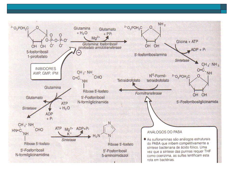 DESOXIRIBONUCLEOTÍDEOS RIBONUCLEOTÍDEO REDUTASE: Específica para nucleotídeos difosfato (ADP, GDP, etc) transformando-os em sua forma desoxinucleotídeos.