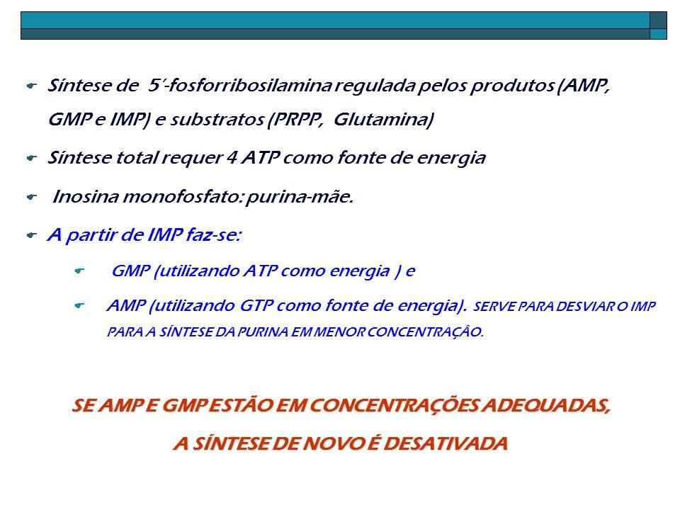 Síntese de 5-fosforribosilamina regulada pelos produtos (AMP, GMP e IMP) e substratos (PRPP, Glutamina) Síntese total requer 4 ATP como fonte de energ