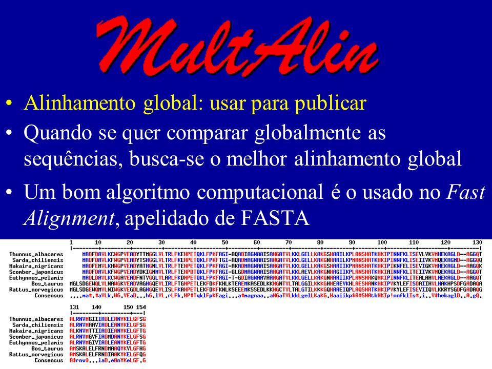 Alinhamento global: usar para publicar Quando se quer comparar globalmente as sequências, busca-se o melhor alinhamento global Um bom algoritmo computacional é o usado no Fast Alignment, apelidado de FASTA