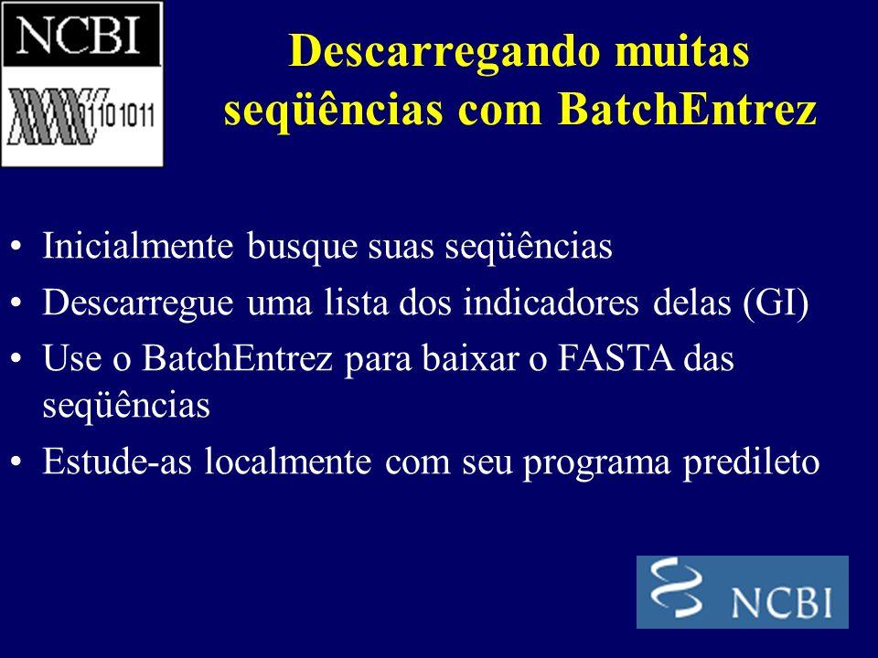 Inicialmente busque suas seqüências Descarregue uma lista dos indicadores delas (GI) Use o BatchEntrez para baixar o FASTA das seqüências Estude-as localmente com seu programa predileto Descarregando muitas seqüências com BatchEntrez