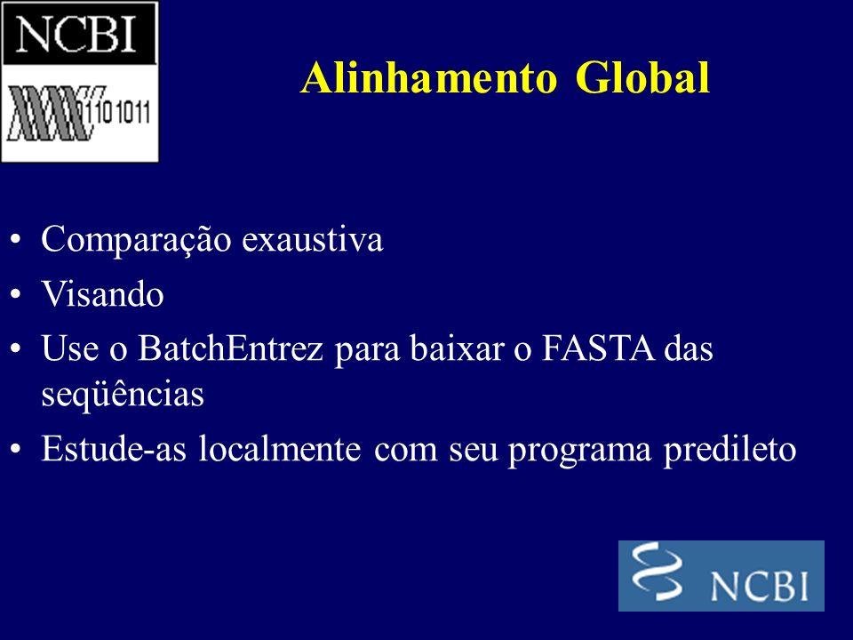 Comparação exaustiva Visando Use o BatchEntrez para baixar o FASTA das seqüências Estude-as localmente com seu programa predileto Alinhamento Global