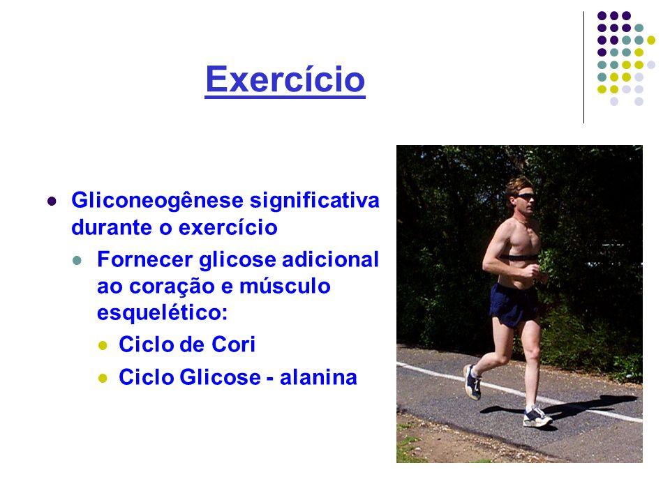 Exercício Gliconeogênese significativa durante o exercício Fornecer glicose adicional ao coração e músculo esquelético: Ciclo de Cori Ciclo Glicose -