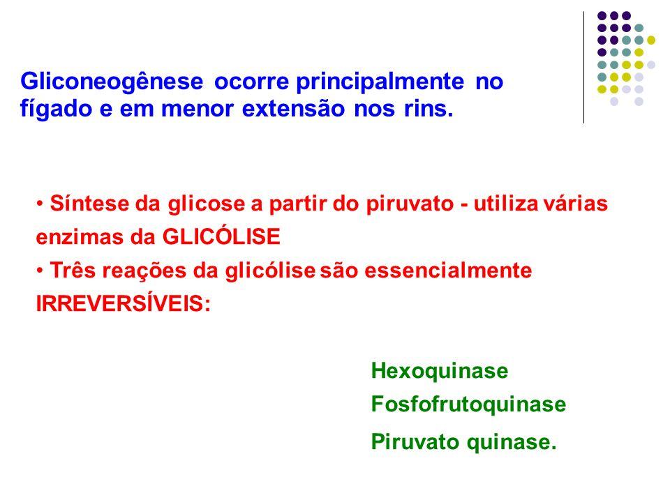 Gliconeogênese ocorre principalmente no fígado e em menor extensão nos rins. Síntese da glicose a partir do piruvato - utiliza várias enzimas da GLICÓ