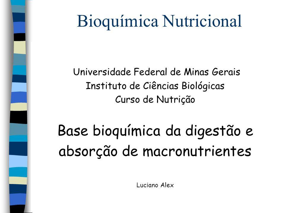 Bioquímica Nutricional Alimentos in natura ou processado - fonte dos nutrientes necessários ao organismo - Ingestão entrada de alimento em um organismo - Digestão quebra das moléculas dos alimentos - Absorção passagem das moléculas à circulação - Distribuição oferta de substâncias às células