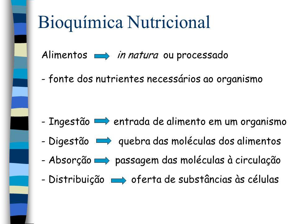 Histologia Gastrintestinal Mucosa Plexo submucoso Plexo mioentérico Muscular da mucosa Tecido.