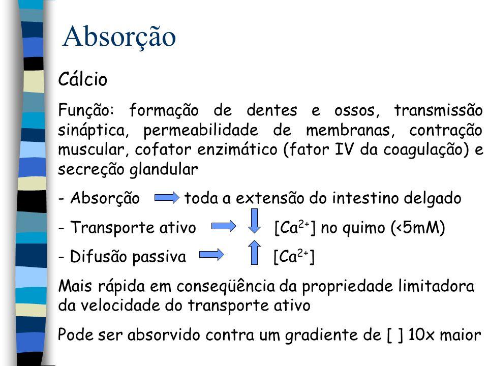 Absorção Processo de absorção estimulado por: Vitamina D 3 (Colecalfiferol) Vitamina D2 (Ergocalciferol) Paratormônio 25(OH)D-1 -hidroxilase renal Sais biliares formação de micelas Vit.D é lipofílica evita formação de sabões de Ca 2+ Fonte: Leite e derivados e vegetais folhosos verdes 1,25-(OH) 2 D